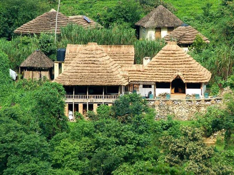 Safari lodge, Bwindi Impenetrable Forest Lodge