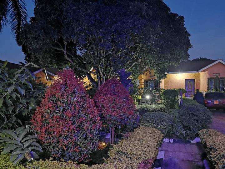 Gorilla African Guesthouse garden